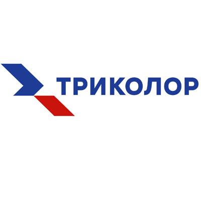 Триколор запустил канал «Под ёлкой» с Николаем Фоменко